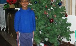 14 girma en el arbol de navidad