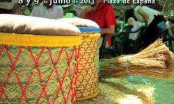 Mercadillo en Villacañas