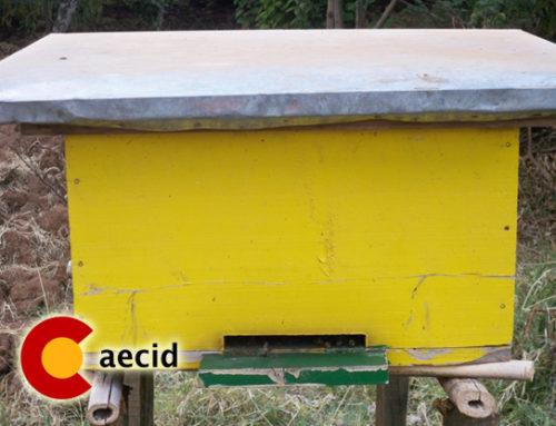 Proyecto para el autoempleo para mujeres y jóvenes desempleados mediante la apicultura sostenible en Shambu